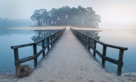 Dutch tropical island - Tropical island in the cold, wet 'n grey Netherlands - foto door renevierhuis op 07-01-2021 - deze foto bevat: zon, strand, water, natuur, licht, winter, spiegeling, landschap, mist, bos, tegenlicht, zonsopkomst, bomen, zand, meer, brug, henschotermeer, tropical