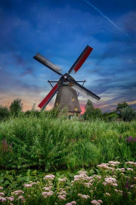 Kinderdijk Single Mill