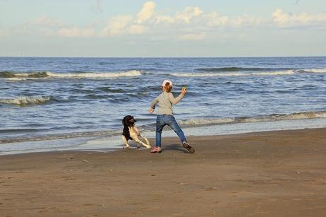 hond en kind in actie