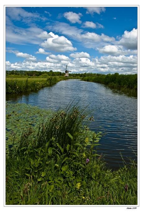 molen D langs de Hoornsevaart