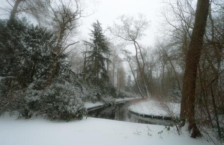 Winter@the park
