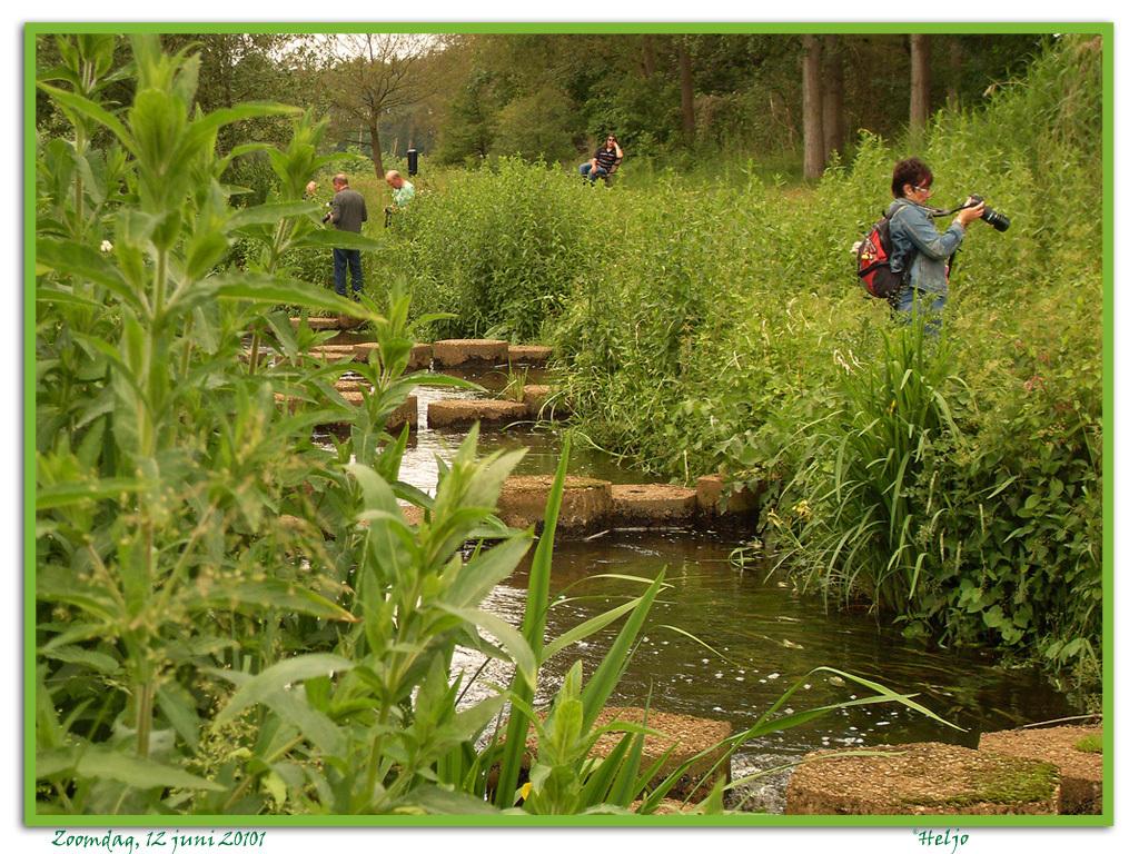 enkele Zoomers op jacht..... - Enkele deelnemers van de Zoomdag op 12 juni j.l. in Heino op 'jacht' in het prachtige natuurgebied rondom de vistrap in de Regge bij Hankate (Ov.) - foto door heljo op 14-06-2010 - deze foto bevat: zoomdagheino