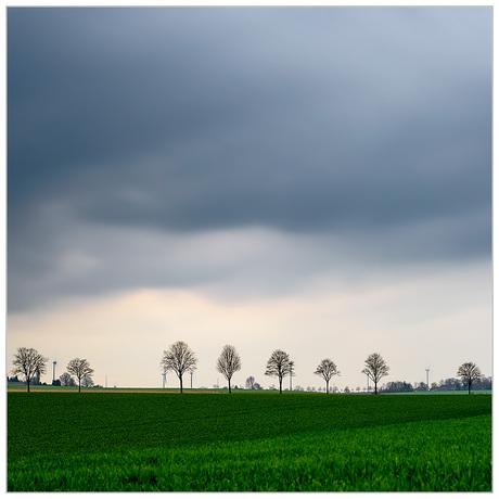 Felder bei Kalkar