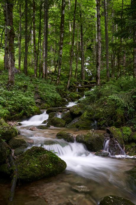 Röthbachwaterval komt uit het dichte bos richting de alpen weide