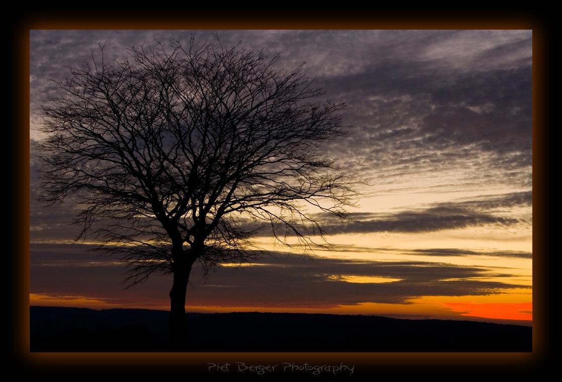 Silent Sunset - Deze foto is genomen voordat ik de foto Sunset Tree maakte. Ik vond toen nog niet de foto die ik eigenlijk wilde hebben, maar naa een beetje PS wek  - foto door PietBerger op 03-12-2007 - deze foto bevat: boom, sunset, zonsondergang, zon, treur