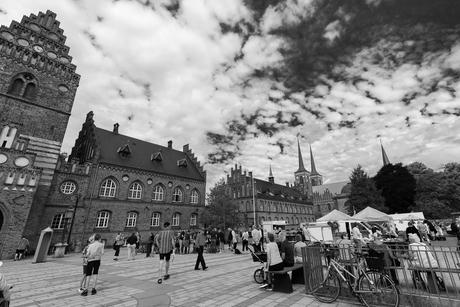 Roskilde plein-5001