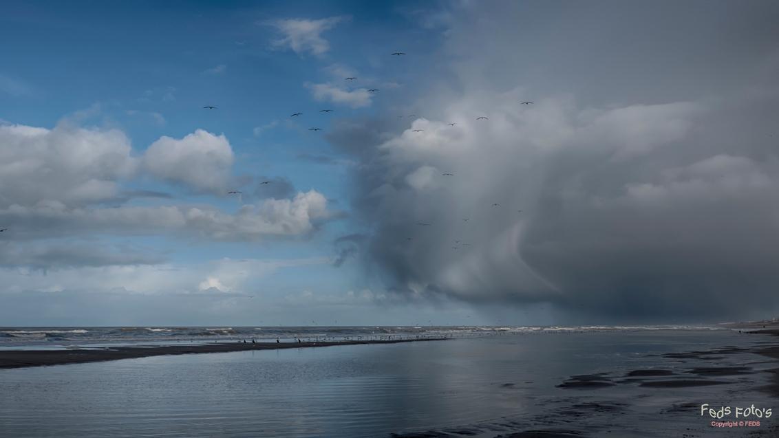 Aankomend buitje - Aankomend buitje - foto door Jan Zuijderduijn op 12-02-2015