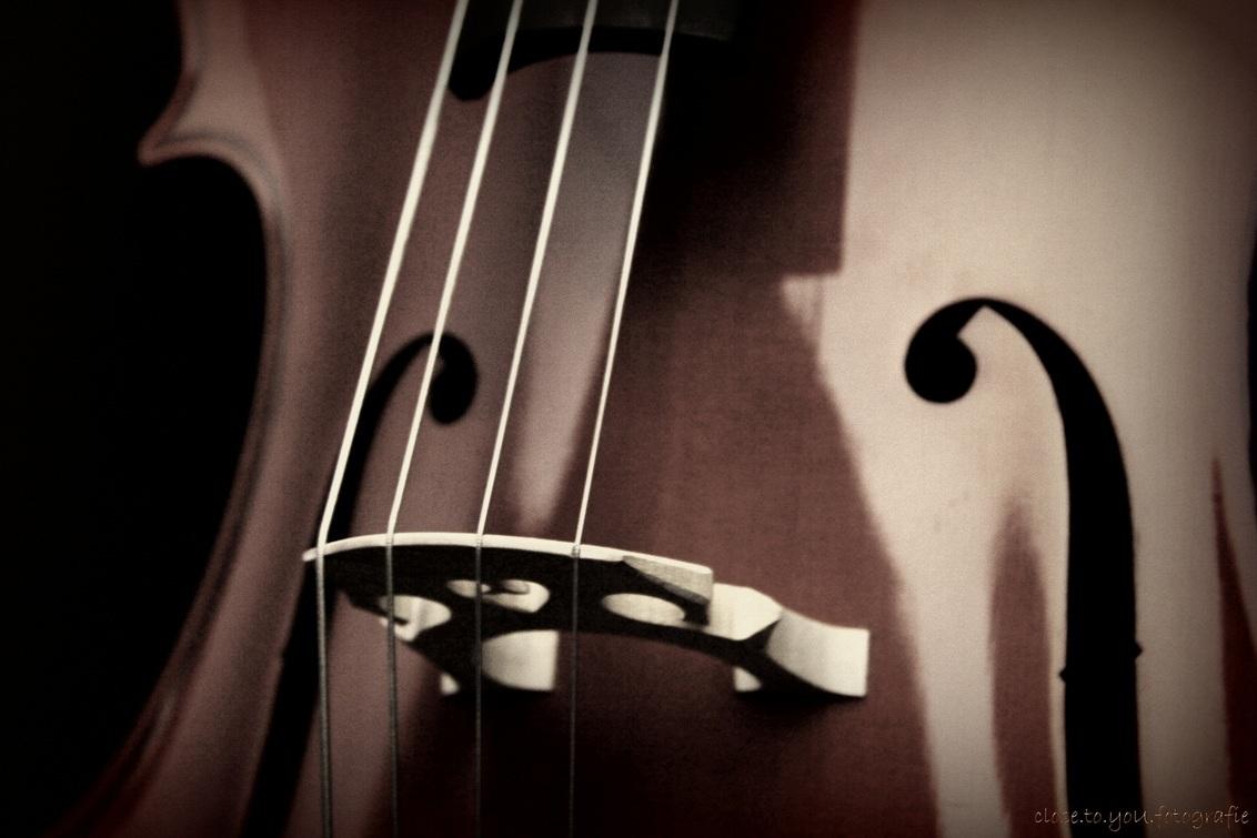 """cello 2 - een ander detail van m'n cello, het valt niet mee om de """"natuurlijke"""" belichting mooi te krijgen bij de cello de kast spiegelt aan alle kanten. - foto door close.to.yoU.fotografie op 14-02-2013 - deze foto bevat: muziek, cello, snaren, kam"""