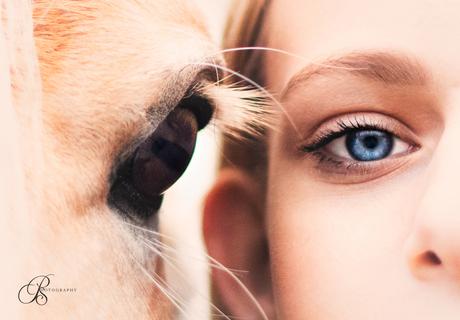 Oog pony & kind