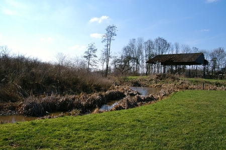 Kasteel Barlham - Het kasteeleiland van het verdwenen kasteel Barlham te Doetinchem. - foto door PetervdWielen op 28-03-2016 - deze foto bevat: water, natuur, kasteel, landschap, bomen