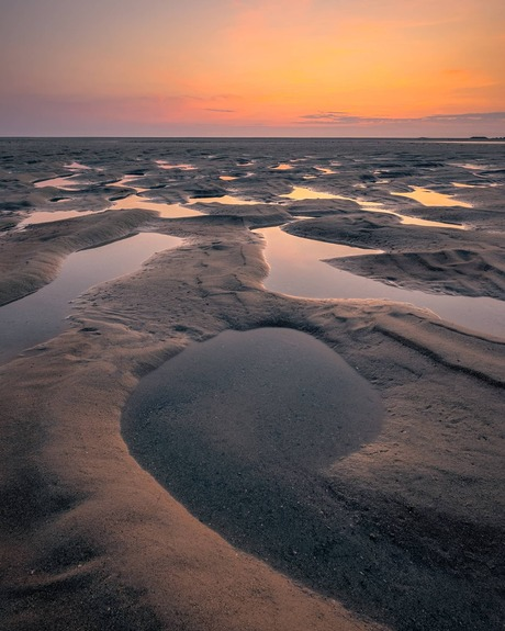 Strand maasvlakte