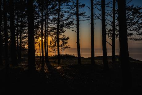 De Baltische kust.