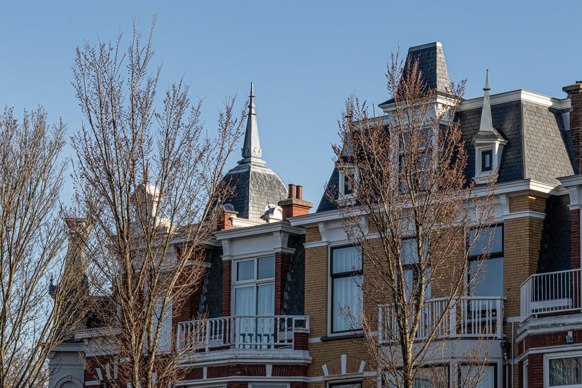 Typisch Den Haag - Mooie huizen van de Statenkwartier gebouwd tussen  1890 en 1915. Veel van die huizen hebben een koepel, als je goed kijkt, zijn ze allemaal anders. - foto door irenas op 15-04-2021 - deze foto bevat: huizen, statenkwartier, koepel, bouwkunst, lucht, venster, gebouw, afdeling, condominium, boom, woongebied, torenblok, stedelijk ontwerp, stad