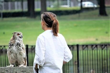 communicatie tussen vogel en mens