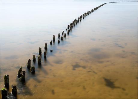 Oldambtmeer [281]