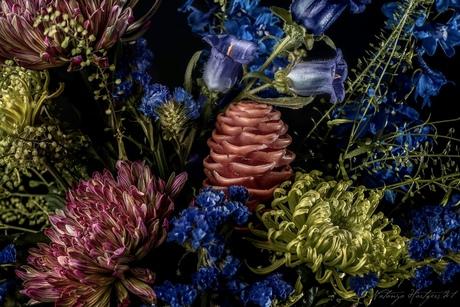 Fleur de Bastin