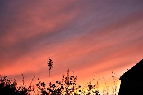 mooie rode lucht