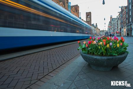 Tulpen uit (in) Amsterdam  - hoe Hollands wil je het hebben tulpen op het Rokin in hartje Amsterdam  - foto door kicksp op 16-04-2021 - locatie: Rokin, 1012 Amsterdam, Nederland - deze foto bevat: tulp, tulpen, amsterdam, tram, rokin, stad, tulp festival, lente, canon, wandeling, stadswandeling, bloem, fabriek, gebouw, bloempot, lucht, weg oppervlak, gras, stedelijk ontwerp, vloeren, trottoir