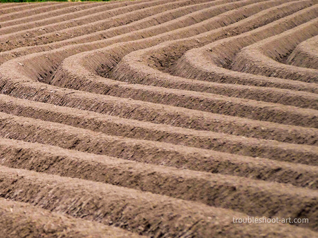 Landschap lijnen