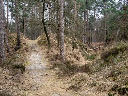 Scheiding der wegen - XXX - foto door Jaap93 op 11-04-2021 - locatie: Het Loo, 7315 Apeldoorn, Nederland - deze foto bevat: fabriek, boom, natuurlijk landschap, hout, kofferbak, doorgaande weg, gras, landschap, bladverliezend, weg