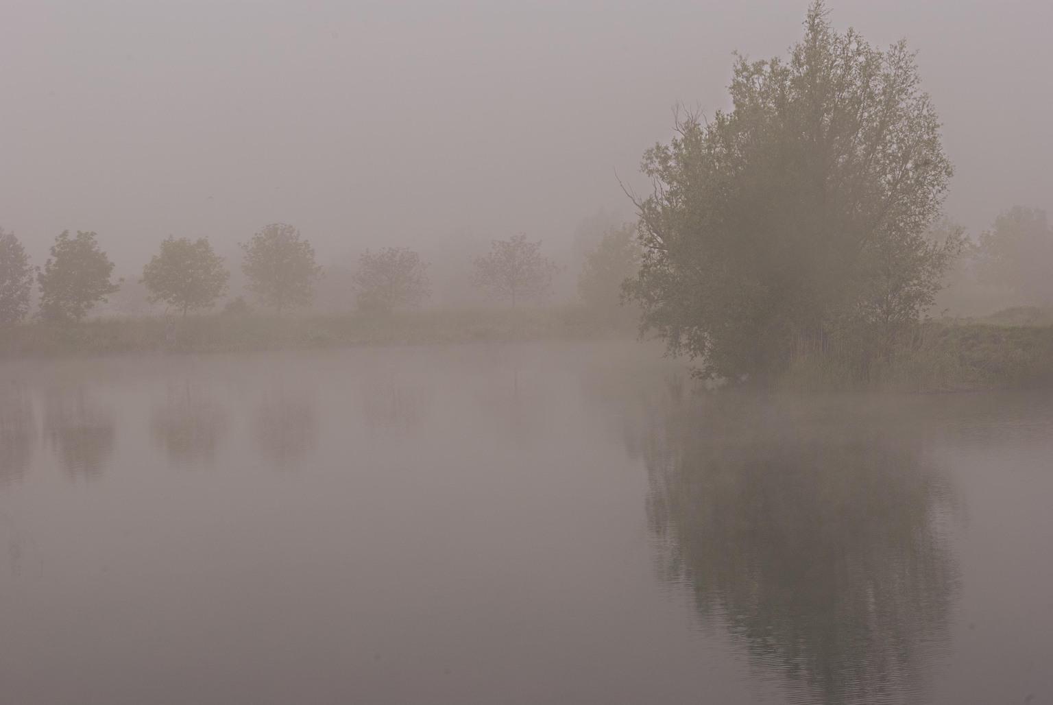 Photography - Oude Durme Hamme België - foto door focuscabrio op 15-04-2021 - locatie: 9220 Hamme, België - deze foto bevat: water, lucht, atmosfeer, mist, natuurlijk landschap, meer, atmosferisch fenomeen, boom, bank, landschap