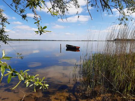 stilleven - Hoe rustig is de zondagmorgen langs de dijk van het Gooimeer - foto door Krea10 op 13-04-2021 - locatie: Huizen, Nederland - deze foto bevat: water, wolk, lucht, watervoorraden, fabriek, plant gemeenschap, natuurlijk landschap, vegetatie, meer, waterloop