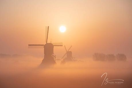 Zwevend in een zee van mist