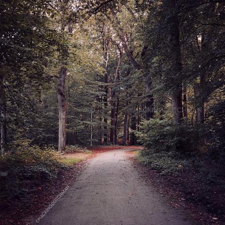 Herfst om de hoek