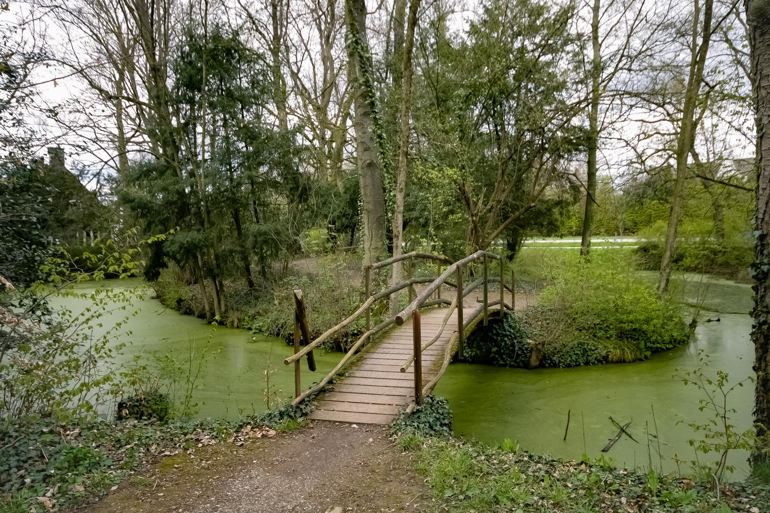 Oud bruggetje - Onverwachts ontdekte plekjes zijn het leukste! - foto door Judith van de Vecht op 15-04-2021 - deze foto bevat: water, fabriek, boom, natuurlijk landschap, fluviatiele landvormen van beken, vegetatie, lucht, gras, oeverzone, landschap
