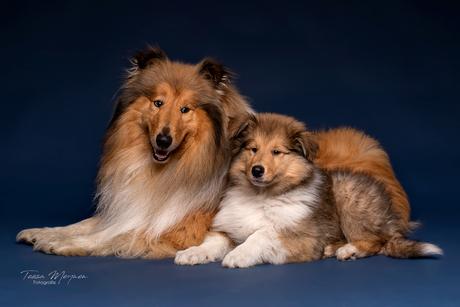 Raiko en Drogo