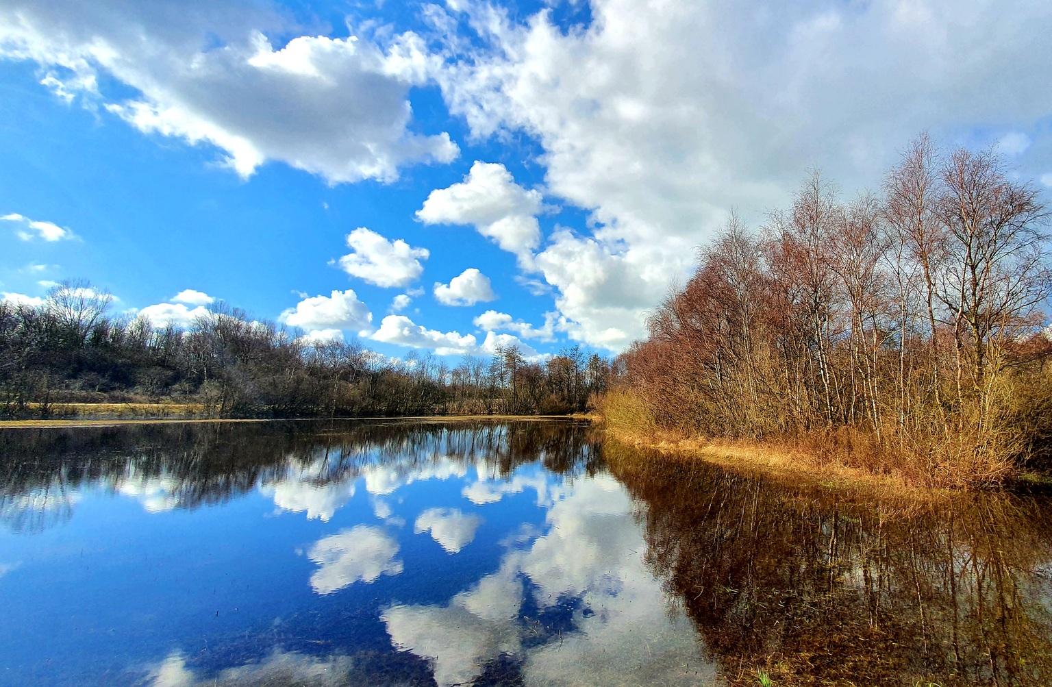 Water wolkjes - Wetlands achterb de duinen bij Oostvoorne! - foto door Edwinner op 16-04-2021 - locatie: 3233 Oostvoorne, Nederland - deze foto bevat: wolk, water, lucht, watervoorraden, fabriek, blauw, natuurlijk landschap, boom, natuurlijke omgeving, afdeling