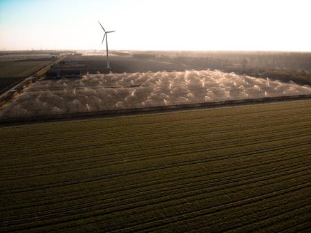 Wijngaarden besproeien - De wijngaarden worden besproeid in Zeewolde - foto door Dutchdronex op 16-04-2021 - deze foto bevat: lucht, windmolen, atmosfeer, ecoregio, wolk, natuur, zwart, natuurlijke omgeving, natuurlijk landschap, windmolenpark