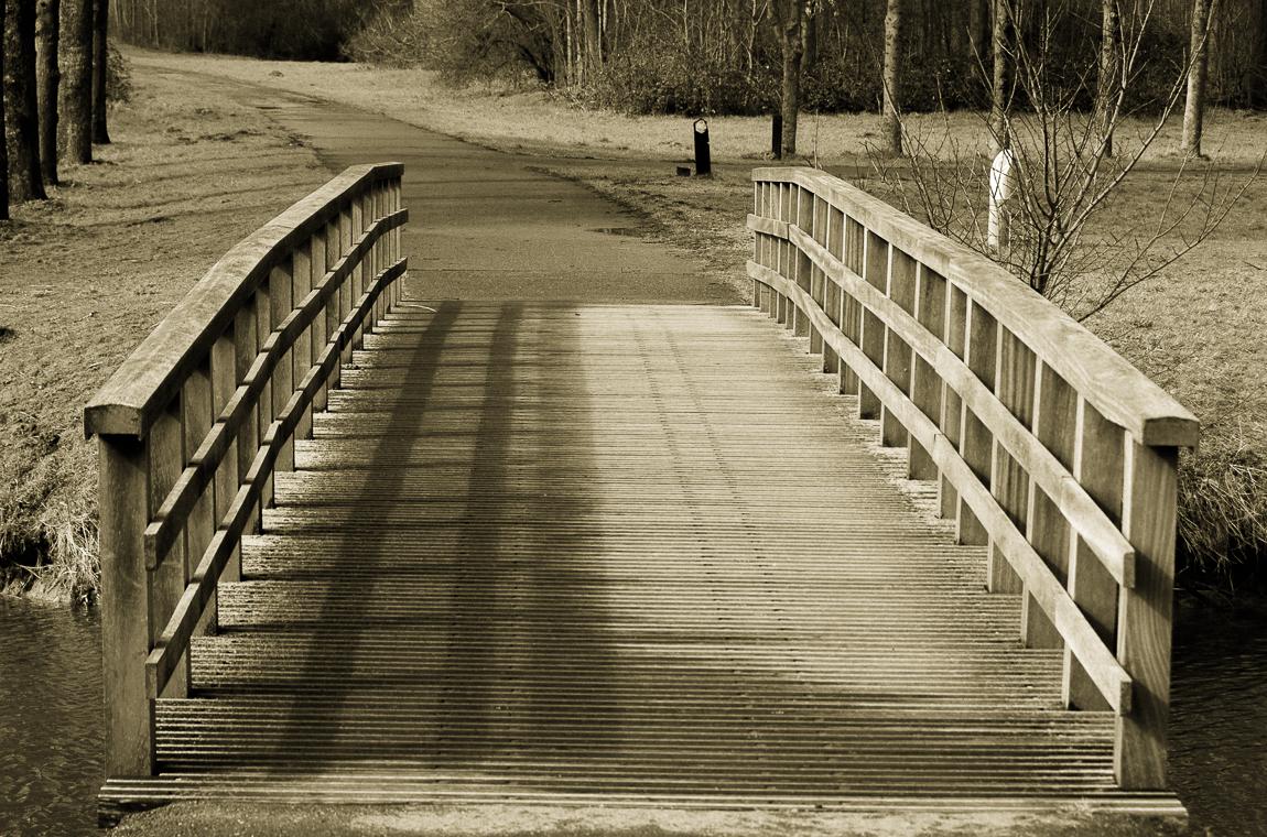 Verbinding - Brug in de bernisse - foto door capture1 op 15-04-2021 - locatie: 3212 Simonshaven, Nederland - deze foto bevat: hout, zonlicht, zwart en wit, vegetatie, natuurlijk landschap, fabriek, boom, gras, lijn, brug