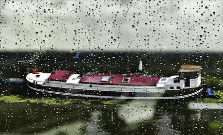 wel regen, geen rampen....................