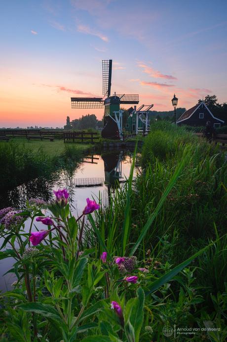 Colorful Zaanse Schans