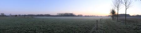 Nevel - Nevel op Landgoed de Bannink - foto door MANL op 10-04-2021 - locatie: 7429 Colmschate, Nederland - deze foto bevat: lucht, atmosfeer, fabriek, natuurlijk landschap, boom, wolk, zonlicht, horizon, gras, grasland