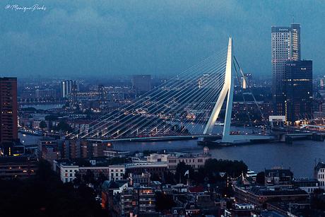 Uitzicht vanaf de Euromast, Rotterdam