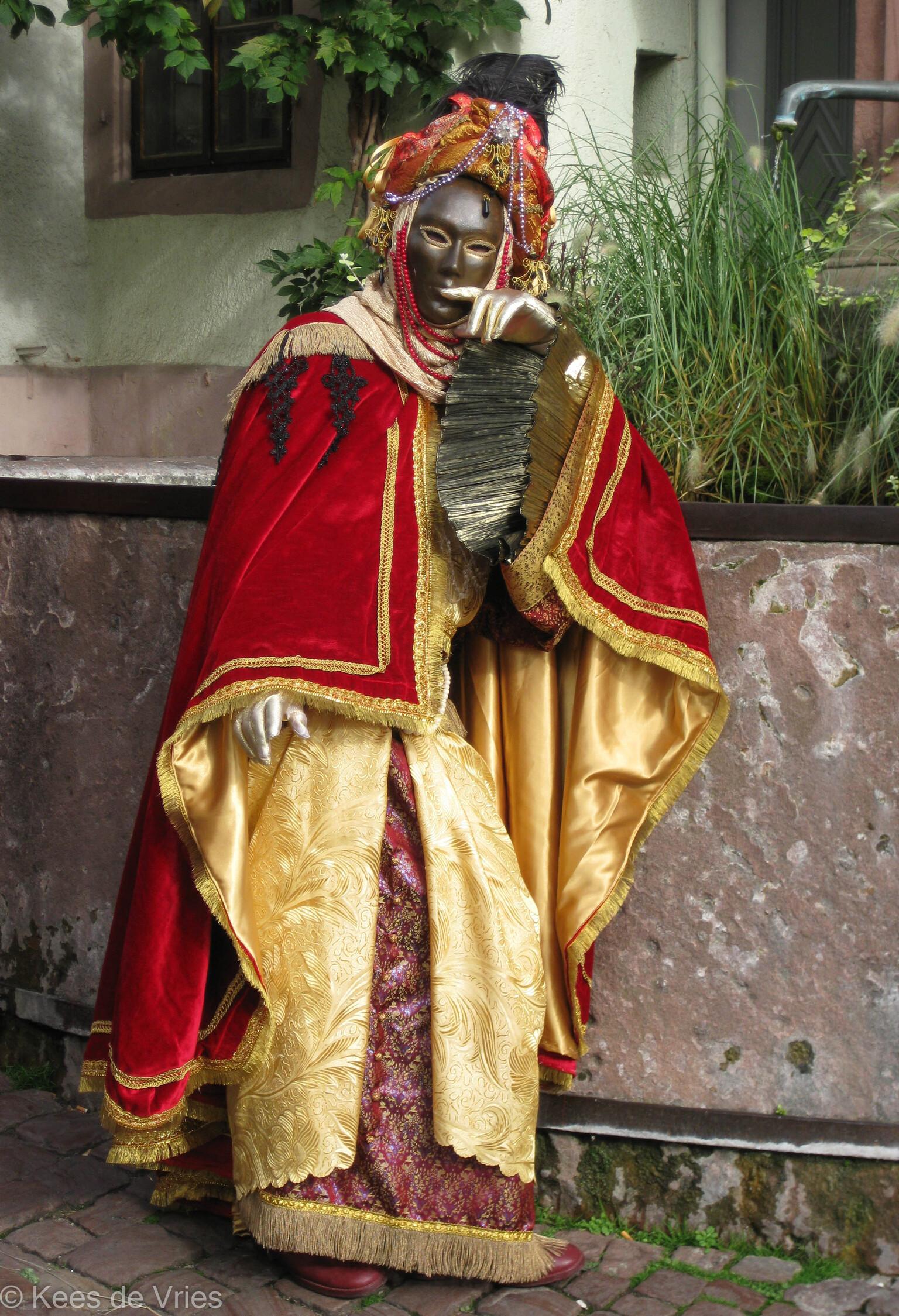 Elzas 2012 - Venetiaanse Parade in Riquewihr in de Elzas - foto door KdV59 op 05-05-2021 - locatie: 68340 Riquewihr, Frankrijk - deze foto bevat: fabriek, venster, heeft, omgaan, masker, kaap, uitvoerende kunst, evenement, vermaak, kunst