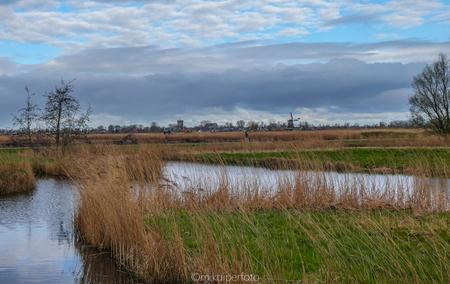 Uitzicht op Westzaan - Vanaf het Buitenpad, Koog aan de Zaan, kijk je uit op de velden, richting Westzaan. - foto door Marian-K op 16-04-2021 - locatie: 1541 MZ Koog aan de Zaan, Nederland - deze foto bevat: water, wolk, fabriek, lucht, fluviatiele landvormen van beken, natuurlijk landschap, meer, boom, lacustrine vlakte, gras