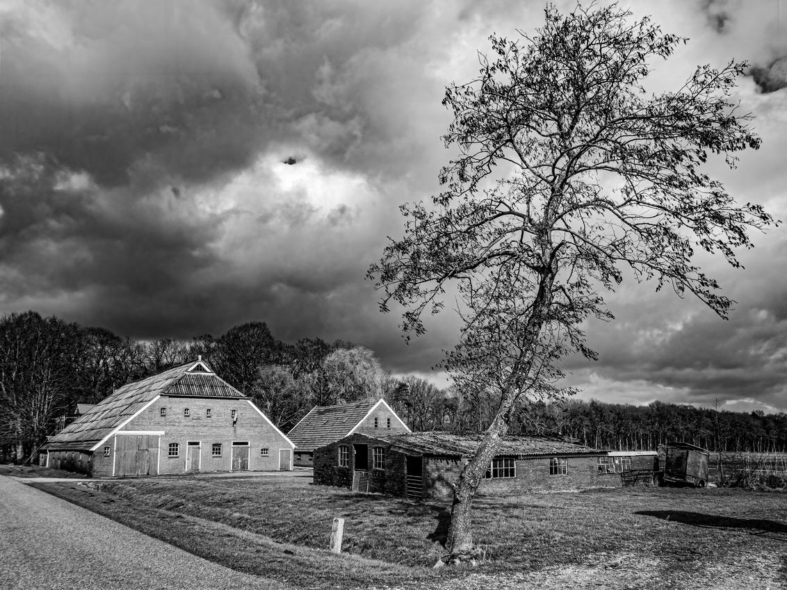 Boerderij bij Vries  - Nu eens in zwartwit - foto door jrubels op 10-04-2021 - locatie: 9481 Vries, Nederland - deze foto bevat: boerderij, zwartwit, boom, wolk, lucht, fabriek, gebouw, ecoregio, wit, boom, natuurlijk landschap, zwart en wit, huis