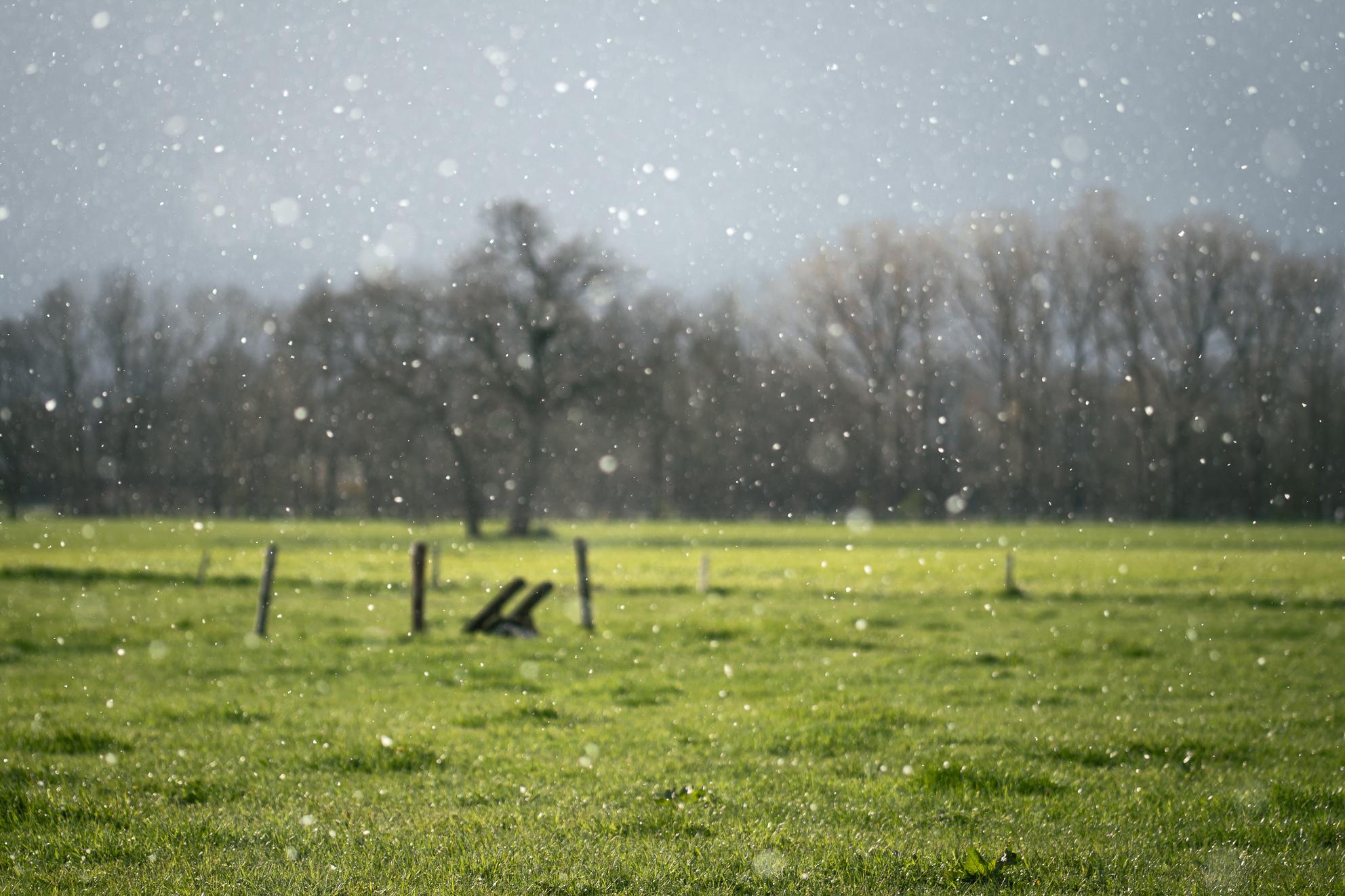 April doet wat hij wil  - Zon en stevige sneeuwbuien op 2de paasdag - foto door windvanger op 08-04-2021 - locatie: Apeldoorn, Nederland - deze foto bevat: landschap, sneeuw, zon, buitengebied, pasen, apeldoorn, water, lucht, fabriek, wolk, atmosfeer, dag, natuurlijk landschap, blad, natuurlijke omgeving, boom