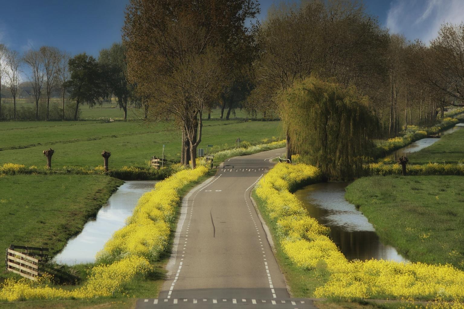 voorjaar 2021 - - - foto door onne1954 op 10-04-2021 - deze foto bevat: landschap, koolzaad, voorjaar, fabriek, lucht, water, blad, natuurlijk landschap, boom, land veel, weg oppervlak, bank, asfalt