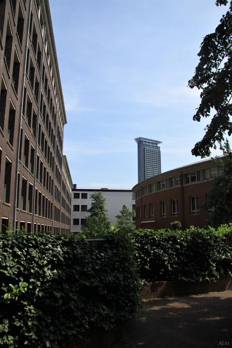 Den - Haag