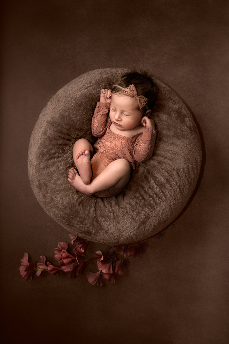 Newborn Novi
