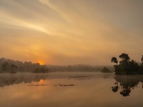 Gouden zonsopkomst Oisterwijkse Vennen