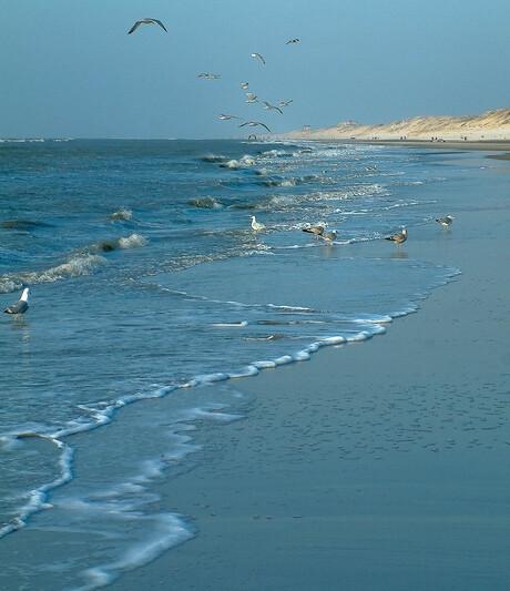 ochtend op het strand