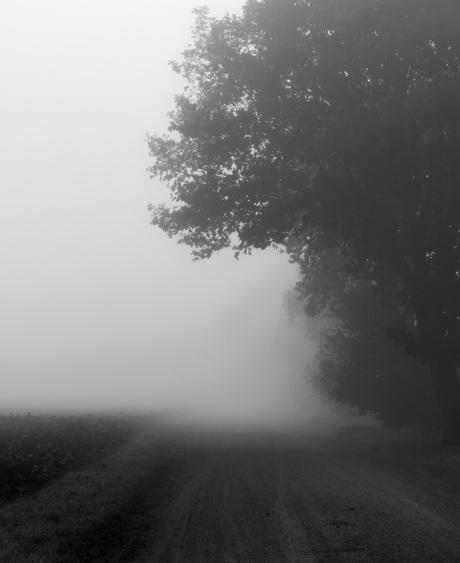 Mysterieus landschap