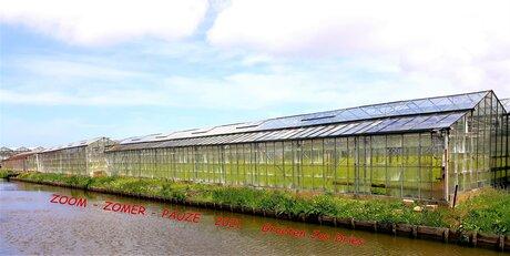 20210516 142551  Westland ten top  Oude warenhuizen  Naaldwijk 16 mei 20201