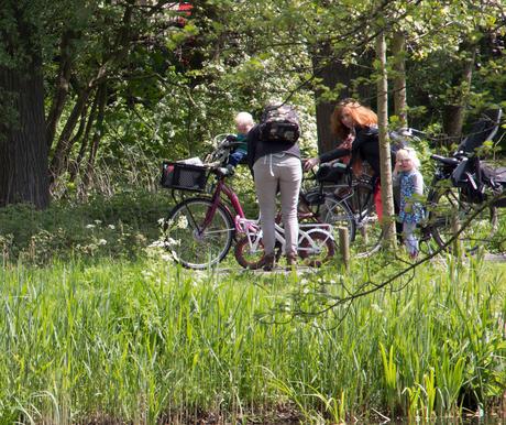 Natuurreservaat aan de Klopvaart in Overvecht te Utrecht.