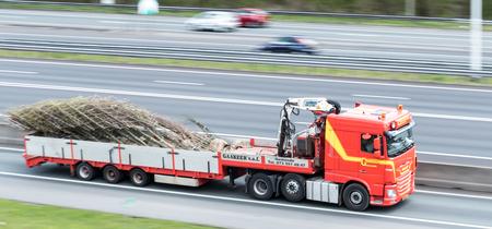 BOMEN - Hier een foto die ik door middel van meetrekken heb gemaakt. Op deze foto is een truck te zien die bomen vervoerd. (groot zien)  Iedereen bedankt voo - foto door 53jan op 13-04-2021 - deze foto bevat: band, wiel, voertuig, autoband, motorvoertuig, infrastructuur, auto, vrachtauto, weg oppervlak, asfalt